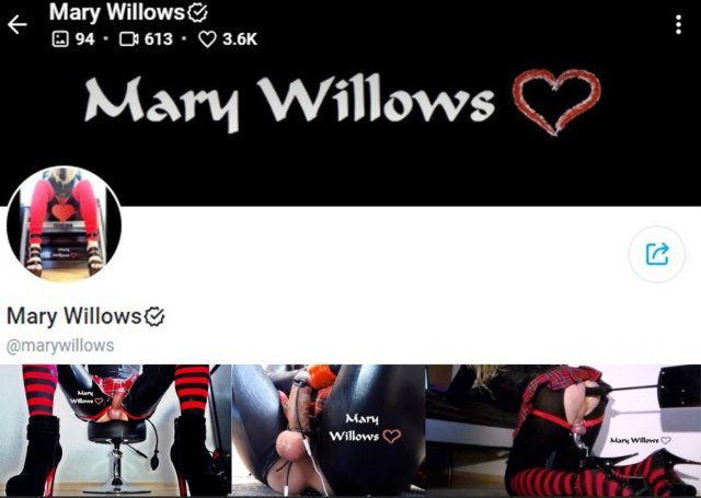 Mary Willows [OnlyFans leak] (@marywillows) (168 clips)